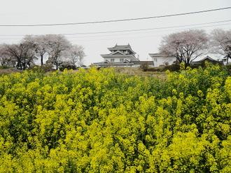 001siroyama