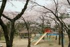 002park