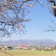 桜野球場赤城山