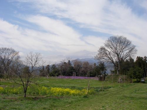 白井城から望む子持山